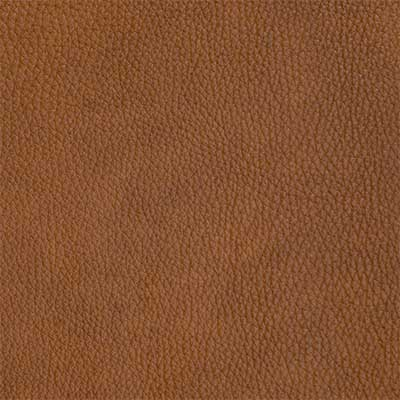Alexandria Gingersnap - QS Leather 2