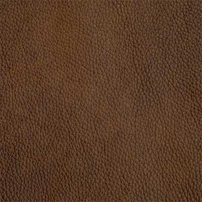 Alexandria Hazelnut - QS Leather 2