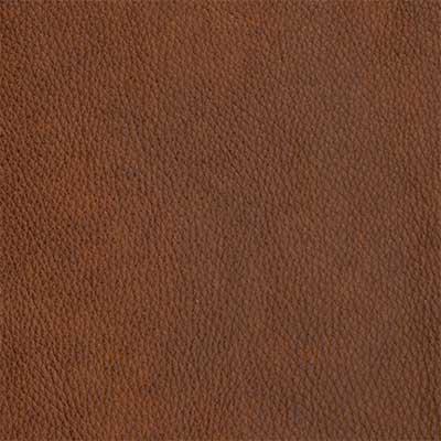 Alexandria Molasses - QS Leather 2