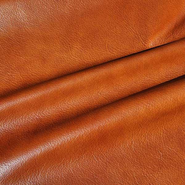 Applause Bravo - QS Leather 2